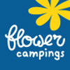 camping olivigne camping flower camping