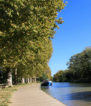 camping bord du canal du midi